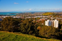 Auckland_Central;Newmarket;Mt_Eden