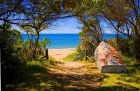 Totaranui;Able_Tasman_National_Park;Tasman_Bay;sand_dunes;sandy_beaches;rocky_sh