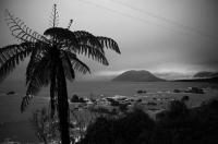 Jacksons_Bay;West_Coast;mountains;valleys;river;Tasman_Sea;Ponga;tree_fern;monch
