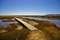 Wairau_Plains_and_Coast;Marlborough;vineyards;braided_rivers;Wairau_River;Wairau