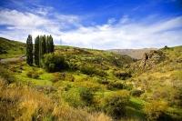 Alexandra;Clyde;Otago;Clutha_River;Gorge_Creek;Roxburgh;Alexandra