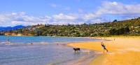 Nelson;Tasman_Bay;Tahunanui_Beach;sandy_beaches;beach;beach_front;boating;golden