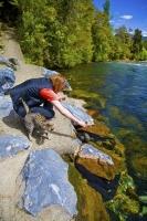 Takaka;Golden_Bay;Bencarri_Nature_Park;hills;rivers;Road;bush;native_forrest;gre