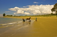 Golden_Bay_Coast;Golden_Bay;Patons_Rock_Beach;River;sandy_beaches;rocky_shorelin