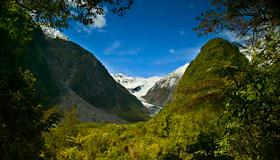 Fox Glacier Images