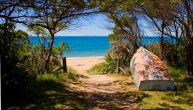 Tasman Bay Images