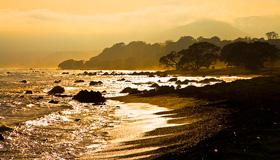 Waihou Bay Images
