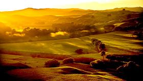 Wairarapa Landscape Images
